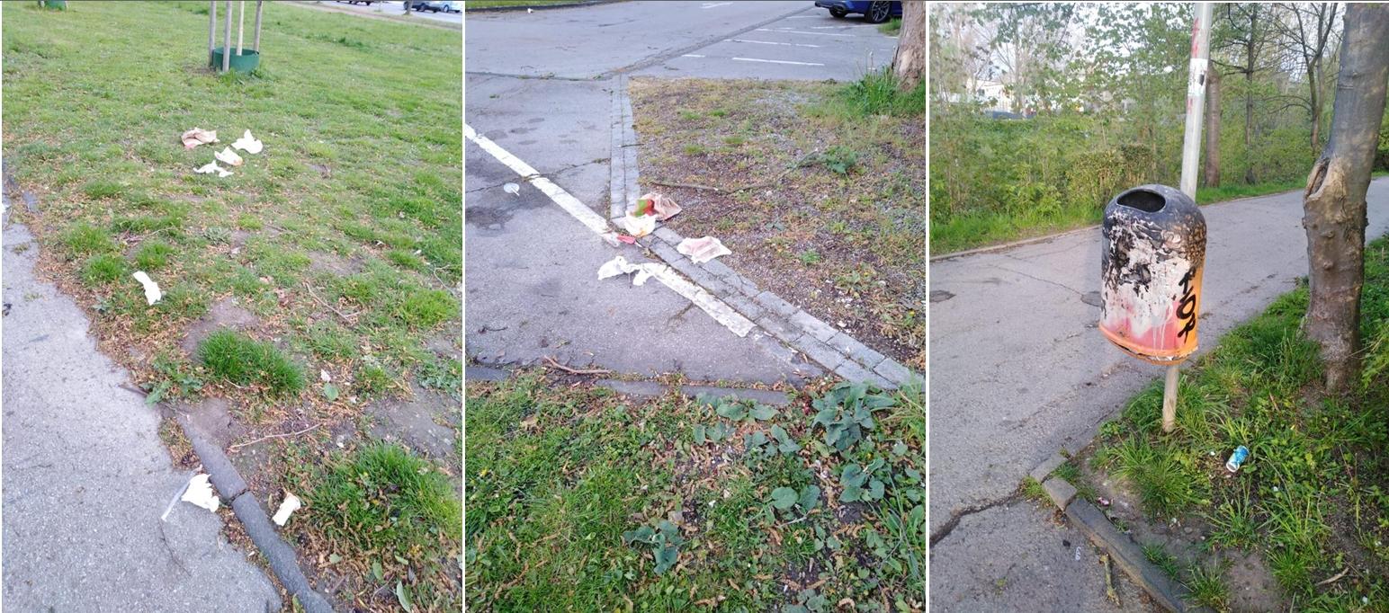 FDP fordert zusätzliche Mülleimer am Parkplatz Bushof
